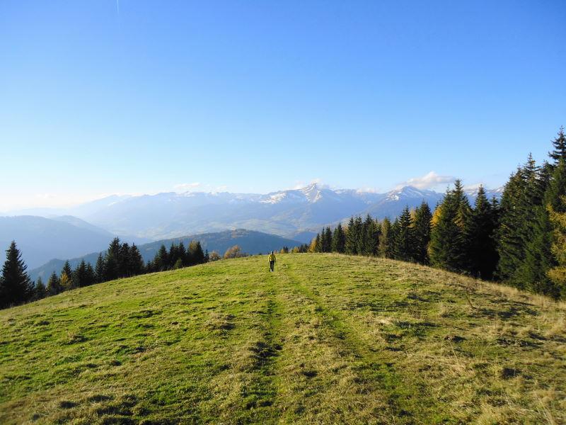 Foto: Günter Siegl / Wander Tour / Von Oberwölz auf den Pleschaitz / Blick zum Greim / 08.11.2014 18:30:18