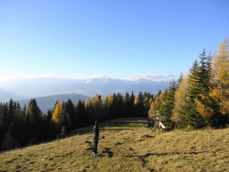 Foto: Günter Siegl / Wander Tour / Von Oberwölz auf den Pleschaitz / 08.11.2014 18:27:30