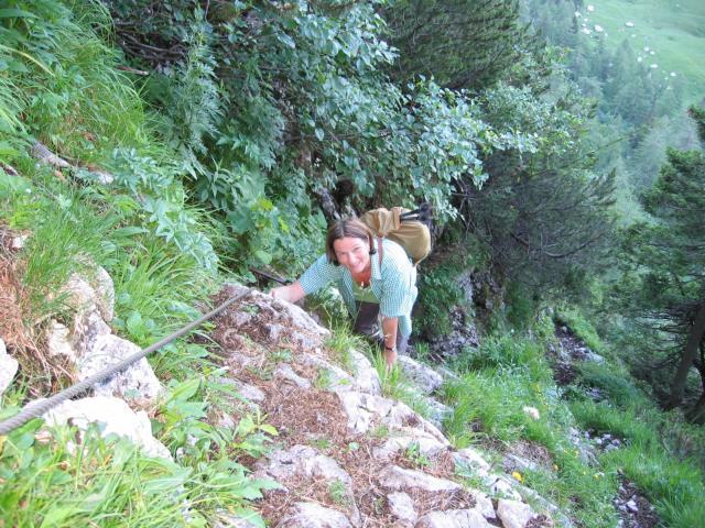 Foto: pepi4813 / Wander Tour / Von Lupitsch auf den Sandling / Am gesicherten Steig / 18.07.2009 22:05:23
