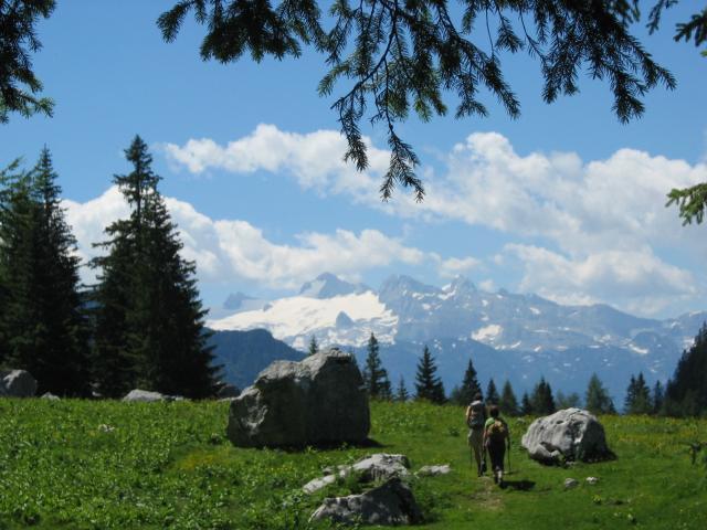 Foto: pepi4813 / Wander Tour / Von Lupitsch auf den Sandling / Bei der Sandling Alm / 18.07.2009 22:08:13