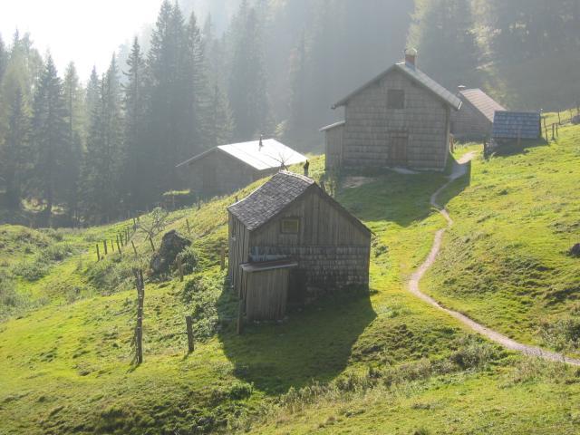 Foto: pepi4813 / Wander Tour / Von Lupitsch auf den Sandling / Sandling Alm / 18.07.2009 22:08:28