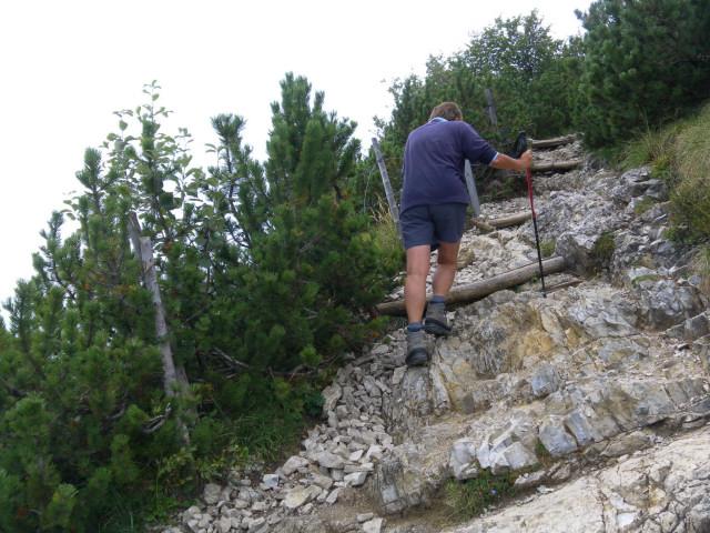 Foto: Wolfgang Lauschensky / Wander Tour / Vom Kesselberg auf den Jochberg / schrofige Latschengasse am Westgrat / 18.09.2012 23:40:00