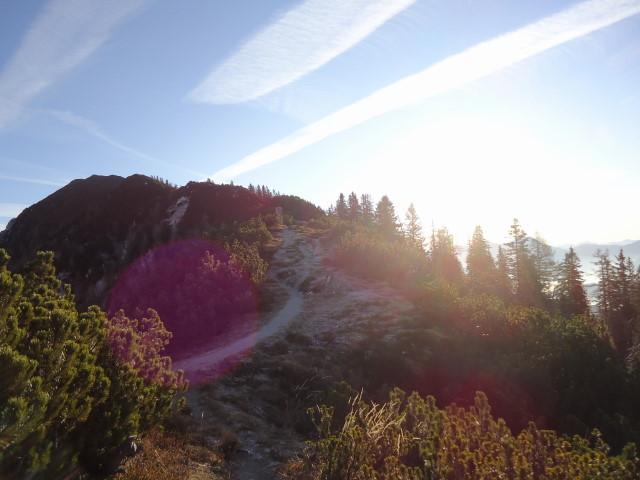 Foto: Günter Siegl / Wandertour / Überschreitung des Sengsengebirges von Windischgarsten nach Klaus / Zum Schillereck / 22.11.2011 17:20:20