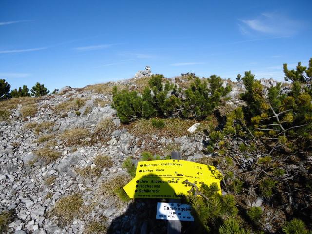 Foto: Günter Siegl / Wandertour / Überschreitung des Sengsengebirges von Windischgarsten nach Klaus / Am Gamskogel / 22.11.2011 17:15:55