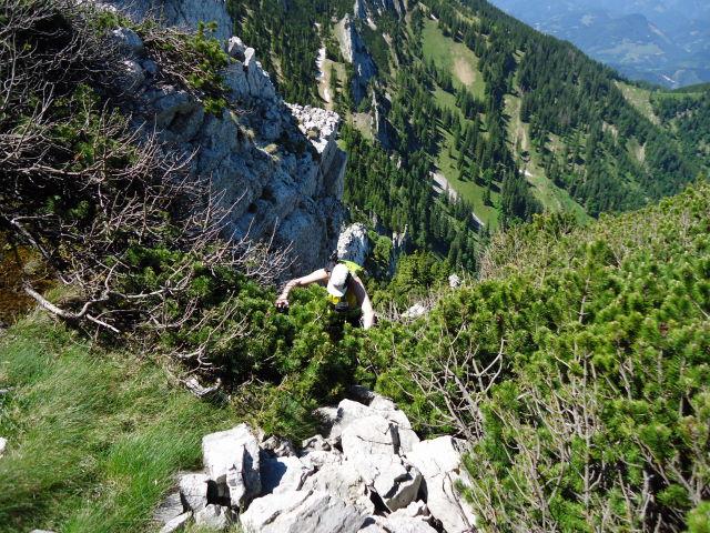 Foto: Günter Siegl / Wander Tour / Über die Voralm zum Dreiländereck NÖ - OÖ - Stmk / 16.06.2012 20:36:07