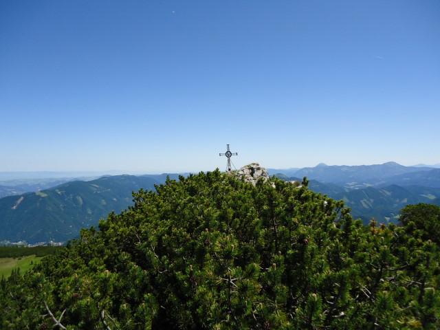 Foto: Günter Siegl / Wander Tour / Über die Voralm zum Dreiländereck NÖ - OÖ - Stmk / Stumpfmauer vulgo Voralpe vulgo Voralm / 16.06.2012 20:35:32