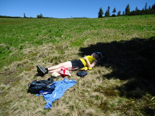 Foto: Günter Siegl / Wander Tour / Über die Voralm zum Dreiländereck NÖ - OÖ - Stmk / 16.06.2012 20:35:02