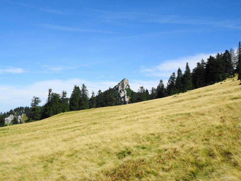 Foto: Günter Siegl / Wander Tour / Von Altenmarkt auf den Tanzboden / Stumpfmauer / 05.11.2015 21:22:33