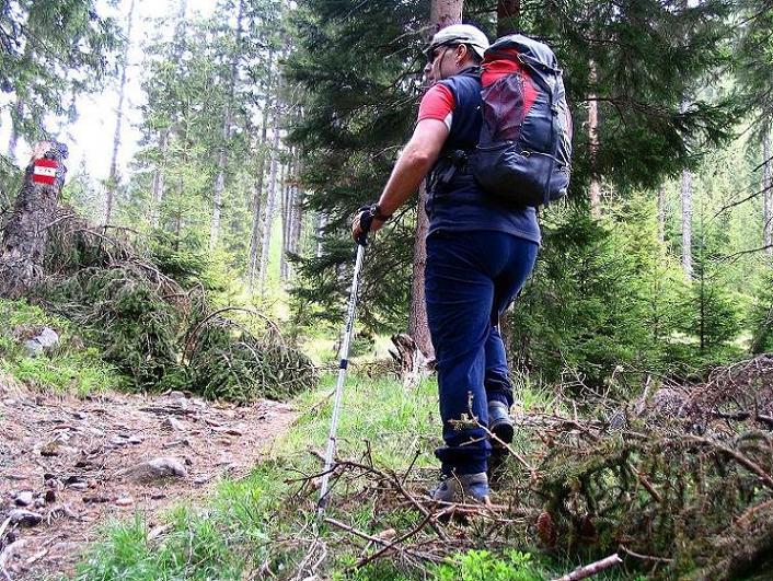 Foto: Andreas Koller / Wandertour / Aus dem Ingeringtal auf den Hochreichhart (2416 m) / 19.05.2008 23:51:03