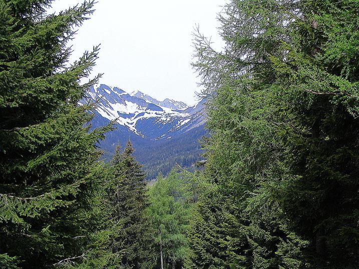 Foto: Andreas Koller / Wandertour / Aus dem Ingeringtal auf den Hochreichhart (2416 m) / 19.05.2008 23:50:10