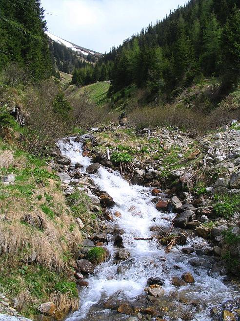 Foto: Andreas Koller / Wander Tour / Aus dem Ingeringtal auf den Hochreichhart (2416 m) / 19.05.2008 23:50:05