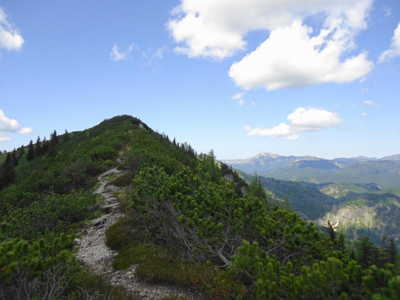 Foto: Günter Siegl / Wandertour / Zellerhüte - Rundwanderung / Vorderer Zeller Hut / 10.06.2014 16:59:23