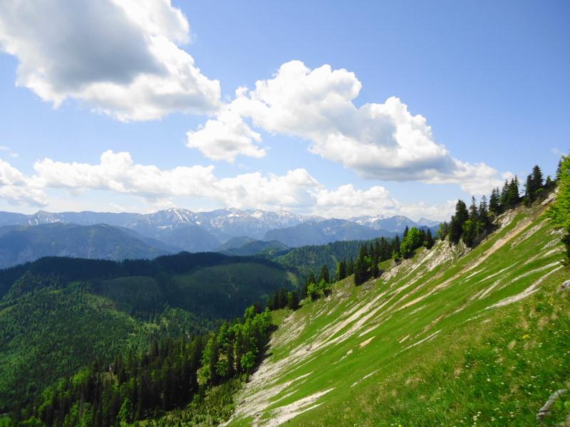 Foto: Günter Siegl / Wander Tour / Zellerhüte - Rundwanderung / Hochschwab / 10.06.2014 16:57:39