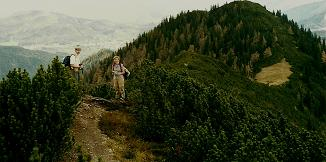 Foto: Wolfgang Dröthandl / Wandertour / Zellerhüte - Rundwanderung / Abstieg über den Kamm vom Vorderen Zellerhut zum Hochkogel; links Mariazell und Bürgeralpe / 06.04.2011 16:33:05