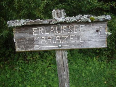Foto: Wolfgang Dröthandl / Wander Tour / Mariazellerland - Rundwanderweg / 20.09.2016 12:21:51