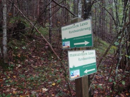 Foto: Wolfgang Dröthandl / Wander Tour / Mariazellerland - Rundwanderweg / 20.09.2016 12:18:26