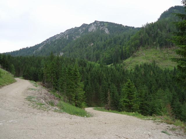Foto: Günter Siegl / Wander Tour / Großes Maiereck - Rundwanderung / Gr. Maiereck kurz vor dem Sauboden / 01.07.2012 12:58:33
