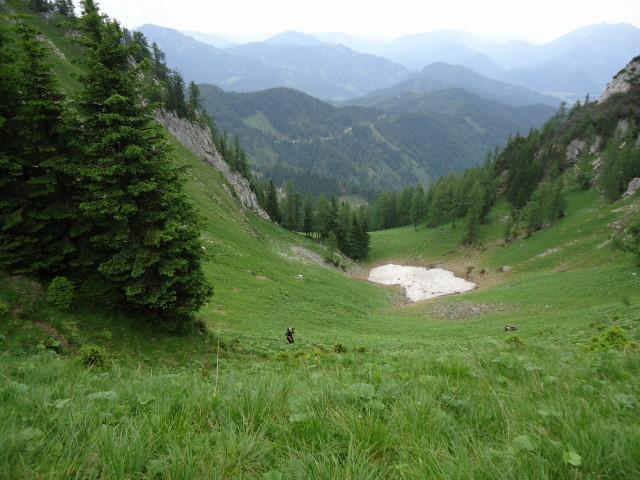 Foto: Günter Siegl / Wander Tour / Großes Maiereck - Rundwanderung / Aufstiegsweg auf den Sattel / 01.07.2012 12:56:05