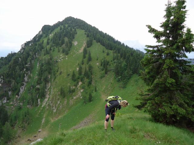 Foto: Günter Siegl / Wander Tour / Großes Maiereck - Rundwanderung / Blick vom Kleinen Maiereck auf das Große Maiereck... ;) / 01.07.2012 12:54:57
