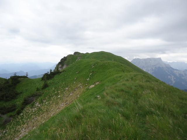 Foto: Günter Siegl / Wander Tour / Großes Maiereck - Rundwanderung / Gipfelaufbau / 01.07.2012 12:51:28