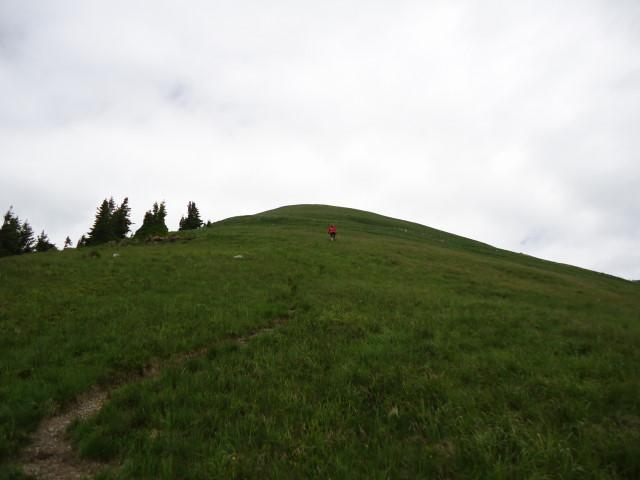 Foto: Günter Siegl / Wander Tour / Großes Maiereck - Rundwanderung / 01.07.2012 12:47:55