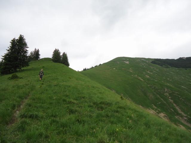 Foto: Günter Siegl / Wander Tour / Großes Maiereck - Rundwanderung / 01.07.2012 12:47:29