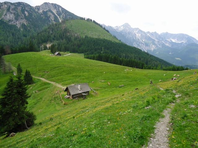 Foto: Günter Siegl / Wander Tour / Großes Maiereck - Rundwanderung / Seisenalm / 01.07.2012 12:46:48