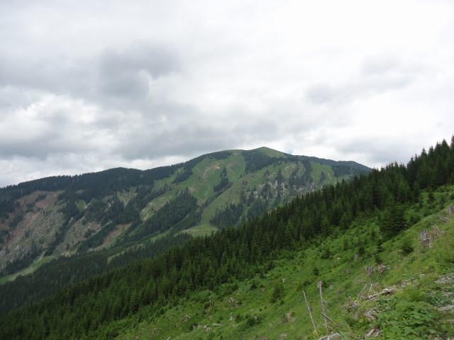 Foto: Günter Siegl / Wander Tour / Großes Maiereck - Rundwanderung / Westseite des Maierecks / 01.07.2012 12:45:22