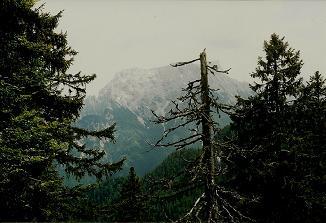 Foto: Wolfgang Dröthandl / Wander Tour / Großes Maiereck - Rundwanderung / Blick auf den Großen Buchstein (vor Seisenalm) / 06.04.2011 16:13:10