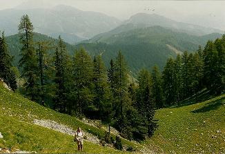 Foto: Wolfgang Dröthandl / Wander Tour / Großes Maiereck - Rundwanderung / Aufstieg zum Kl. Maiereck durch eine Wiesenkarmulde - mehr Route als Weg... (Blickrichtung Norden) / 06.04.2011 16:20:44