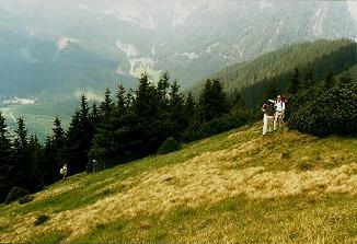 Foto: Wolfgang Dröthandl / Wander Tour / Großes Maiereck - Rundwanderung / relativ mühsamer Anstieg über Wiesenkamm / 06.04.2011 16:19:53