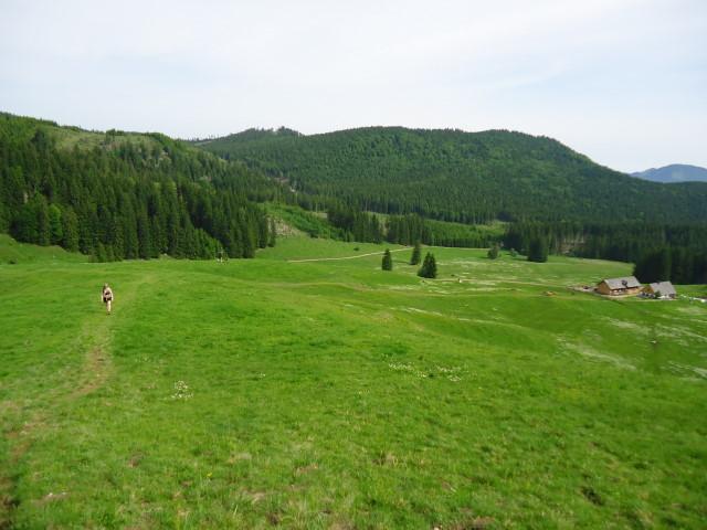 Foto: Günter Siegl / Wander Tour / Über die Ebenforstalm auf Alpstein und Trämpl / 03.06.2012 20:30:20