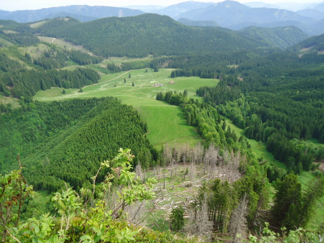 Foto: Günter Siegl / Wander Tour / Über die Ebenforstalm auf Alpstein und Trämpl / Blick vom Trämpl auf die Ebenforstalm / 03.06.2012 20:27:31