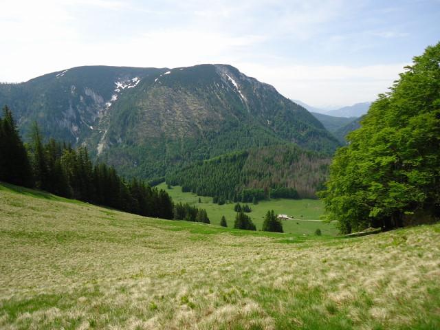 Foto: Günter Siegl / Wander Tour / Über die Ebenforstalm auf Alpstein und Trämpl / Größtenberg / 03.06.2012 20:26:05