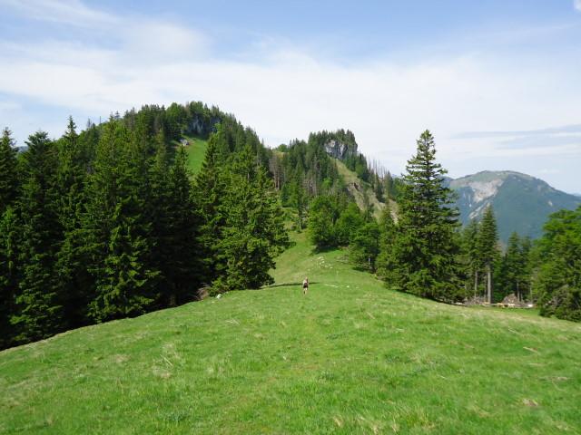 Foto: Günter Siegl / Wander Tour / Über die Ebenforstalm auf Alpstein und Trämpl / 03.06.2012 20:23:19