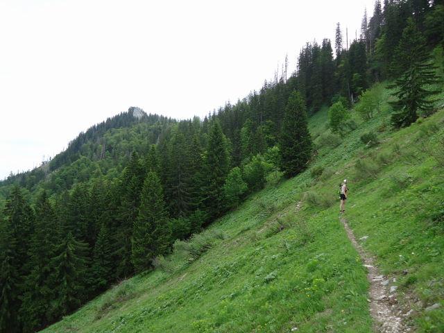 Foto: Günter Siegl / Wander Tour / Über die Ebenforstalm auf Alpstein und Trämpl / 03.06.2012 20:19:52