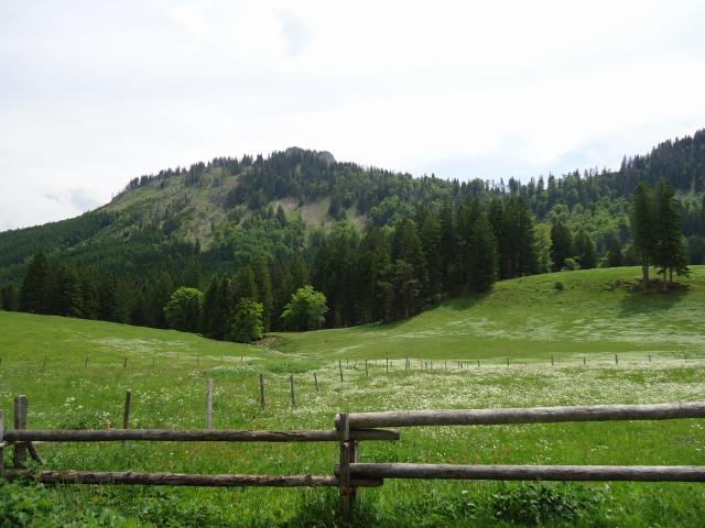 Foto: Günter Siegl / Wander Tour / Über die Ebenforstalm auf Alpstein und Trämpl / 03.06.2012 20:19:33