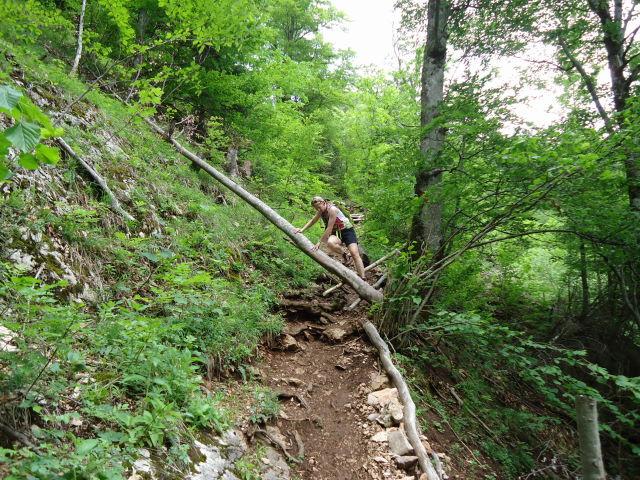 Foto: Günter Siegl / Wander Tour / Über die Ebenforstalm auf Alpstein und Trämpl / 03.06.2012 20:18:35