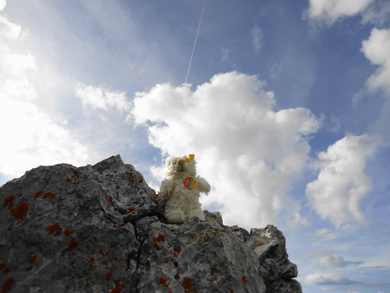Foto: Günter Siegl / Wander Tour / Durch die Steinerne Rinne zur Vorderen und Hinteren Goinger Halt / Basty / 12.08.2016 12:26:04
