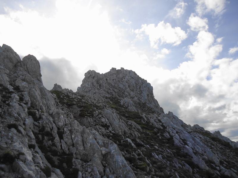 Foto: Günter Siegl / Wander Tour / Durch die Steinerne Rinne zur Vorderen und Hinteren Goinger Halt / Gipfelaufbau Vordere Goinger Halt / 12.08.2016 12:18:45