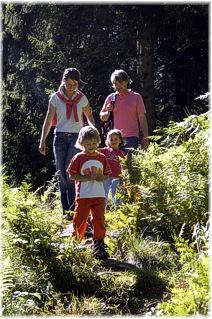 Foto: Jürgen Zudrell - Panoramagasthof Kristberg / Wander Tour / Kristberger Panoramatour über das Muttjöchle  / Das Foto wurde von Silbertal Tourismus (www.silbertal.at) bereit gestellt / 14.06.2009 22:40:25