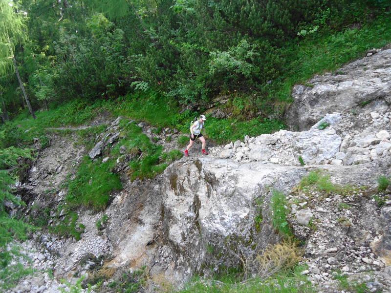 Foto: Günter Siegl / Wander Tour / Zinkenkogel-Runde / 05.07.2014 15:34:47