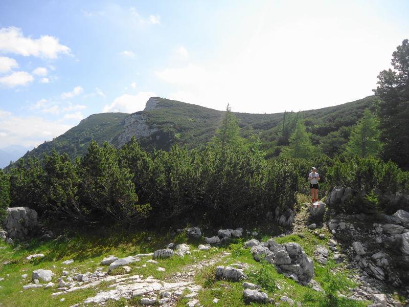 Foto: Günter Siegl / Wander Tour / Zinkenkogel-Runde / Gipfelaufbau / 05.07.2014 15:34:18