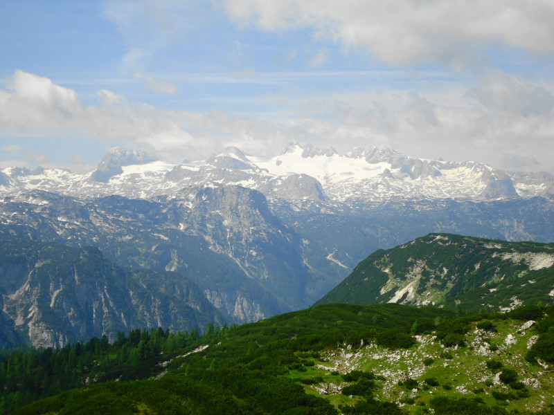Foto: Günter Siegl / Wander Tour / Zinkenkogel-Runde / Dachstein / 05.07.2014 15:33:21