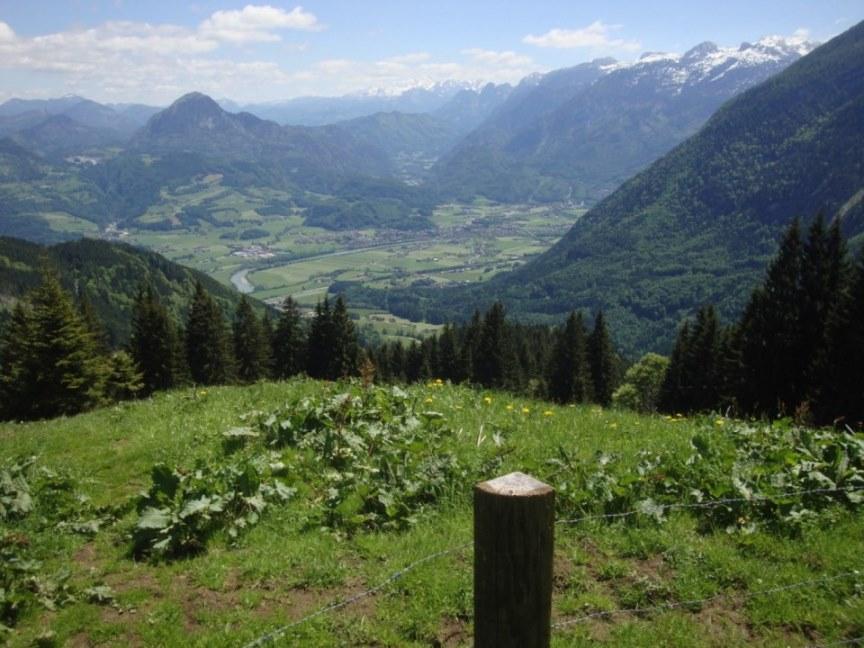 Foto: Wolfgang Dröthandl / Wander Tour / Von Gasteig zum Purtschellerhaus / Blick von der Dürrfeichtenalm nach Golling und ins Salzachtal; am Horizont Dachstein, rechts Tennengebirge / 07.06.2017 13:11:57