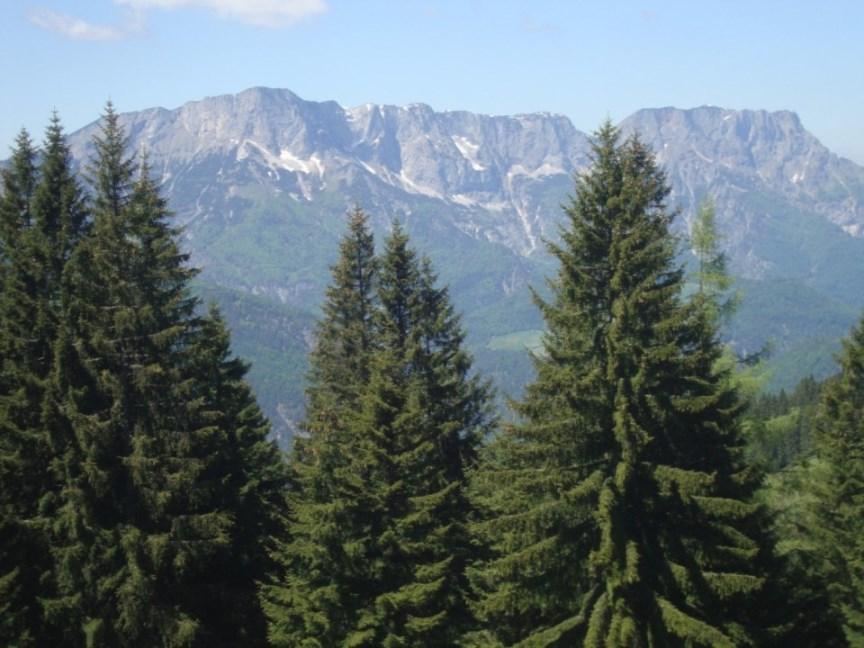 Foto: Wolfgang Dröthandl / Wander Tour / Von Gasteig zum Purtschellerhaus / Untersberg (Berchtesgadener und Salzburger Hochthron) / 07.06.2017 13:08:27