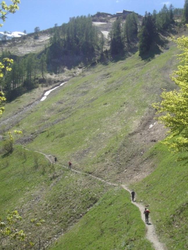 Foto: Wolfgang Dröthandl / Wander Tour / Von Gasteig zum Purtschellerhaus / Österreichischer Weg zur Hütte (rechts oben) / 07.06.2017 13:08:02