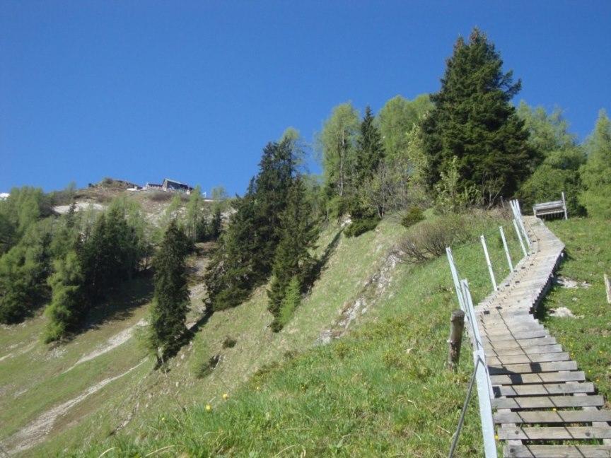 Foto: Wolfgang Dröthandl / Wander Tour / Von Gasteig zum Purtschellerhaus / Der bayrische Weg führt über steile bodennahe Leitern / 07.06.2017 13:07:02