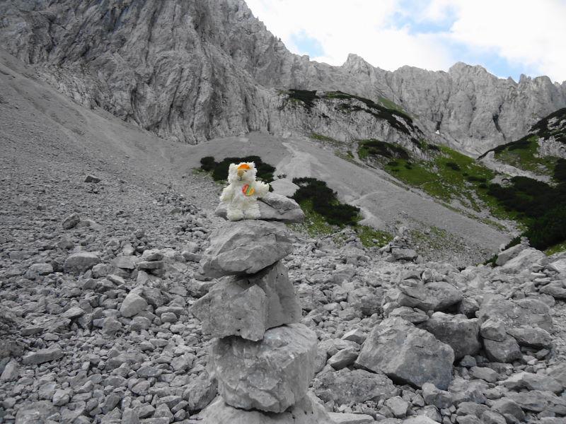 Foto: Günter Siegl / Wander Tour / Durch das Kleine Griesener Kar auf das Lärchegg  / Basty weist den Weg / 22.08.2016 20:46:05