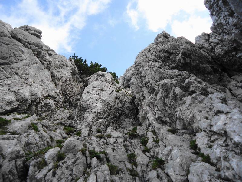 Foto: Günter Siegl / Wander Tour / Durch das Kleine Griesener Kar auf das Lärchegg  / Leichte Kletterei / 22.08.2016 20:44:36
